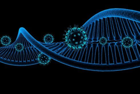 retrovirus dna