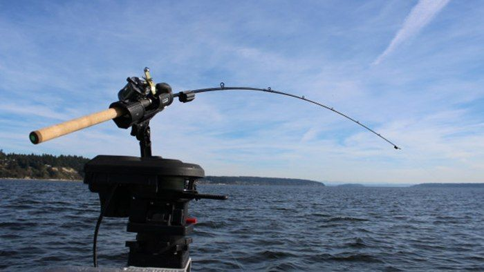 La canna da pesca tech avverte il cellulare quando un pesce abbocca