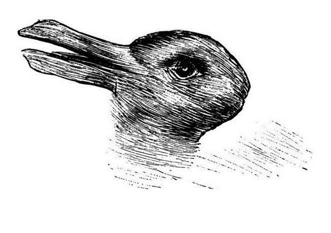 Anatra o coniglio? Dimmi cosa vedi e ti dirò che mente hai