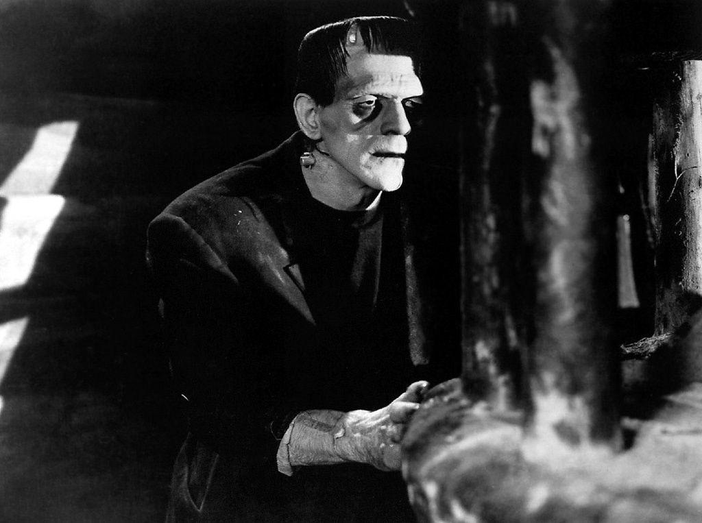 Frankenstein junior, film