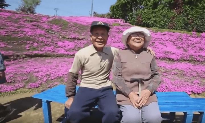 Giardino di muschio rosa per la moglie cieca