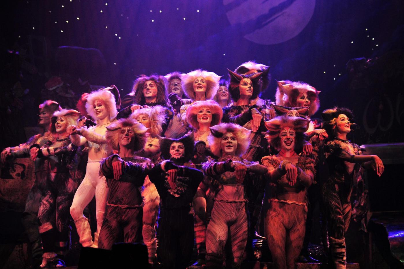 Cats il musical, dopo Milano il tour 2016 fa tappa a Bari: trama di un'opera leggendaria