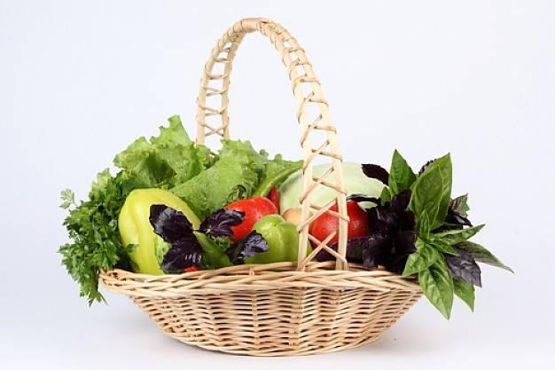 30 aforismi vegetariani: le migliori frasi su questa scelta di vita