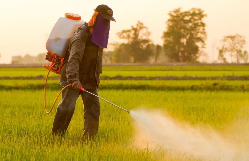 Glifosato e ambiente: tutte le problematiche legate a questa sostanza chimica