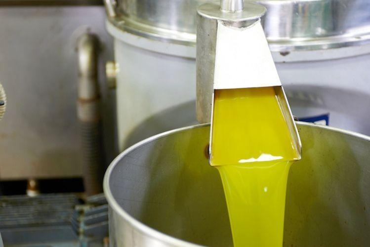 Cibo contraffatto, produttori extravergine contro olio importato dalla Tunisia