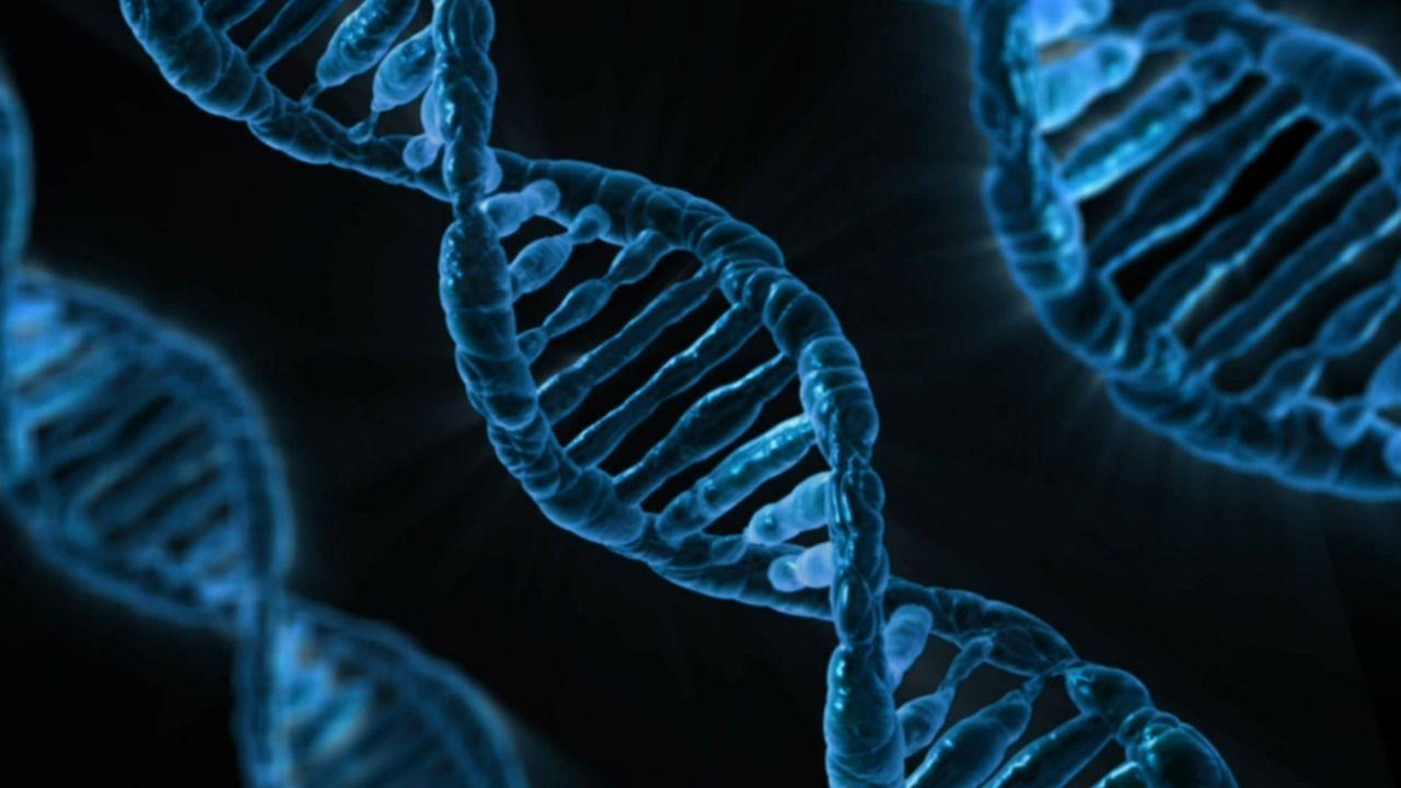 mutazioni genetiche supereroi