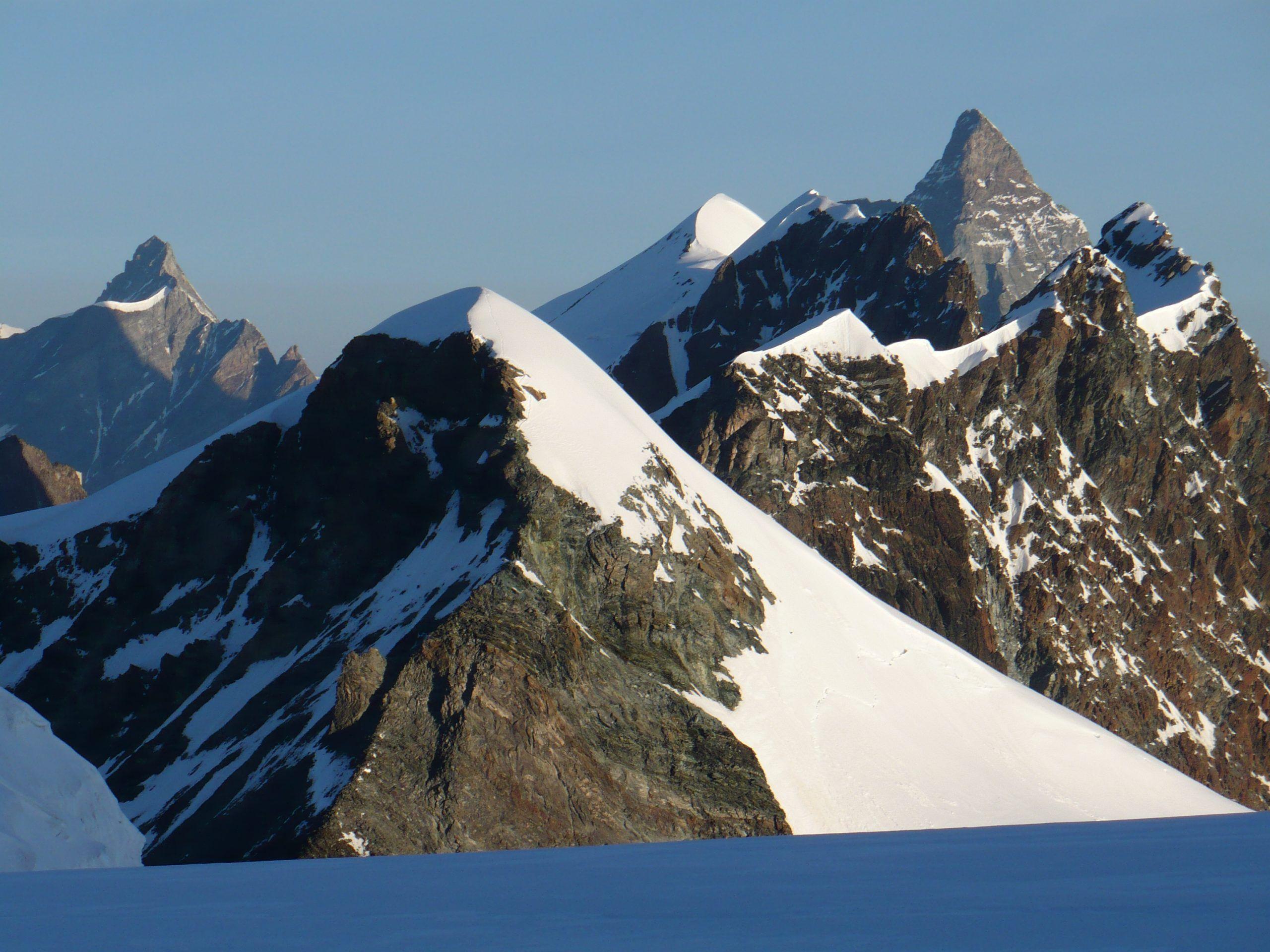 Alpi immigrato