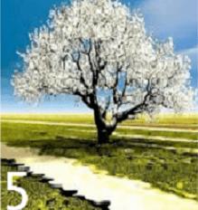 Test personalita alberi 5
