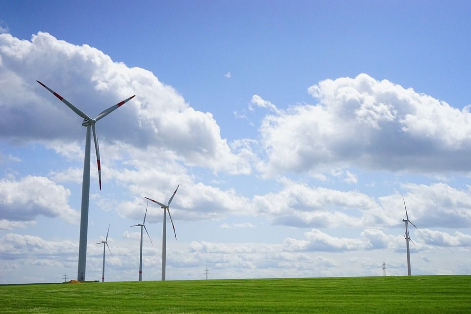 eolico impatto ambiente