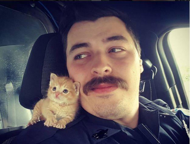 Salva un gattino e lo accoglie in casa: il poliziotto con i baffi è il nuovo eroe del web