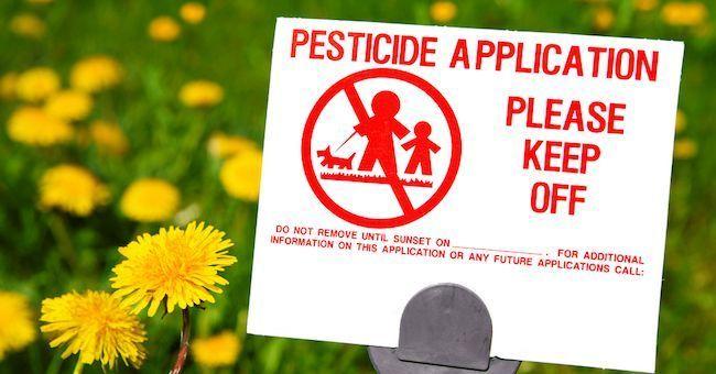 Rapporto Ispra 2016, pesticidi nel 64 per cento delle acque di fiumi e laghi