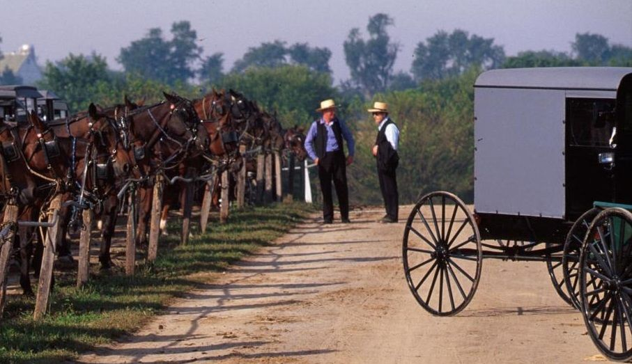 Amish italiani