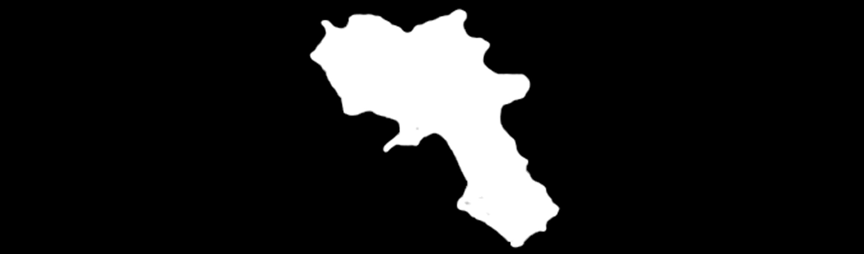 Campania mafia