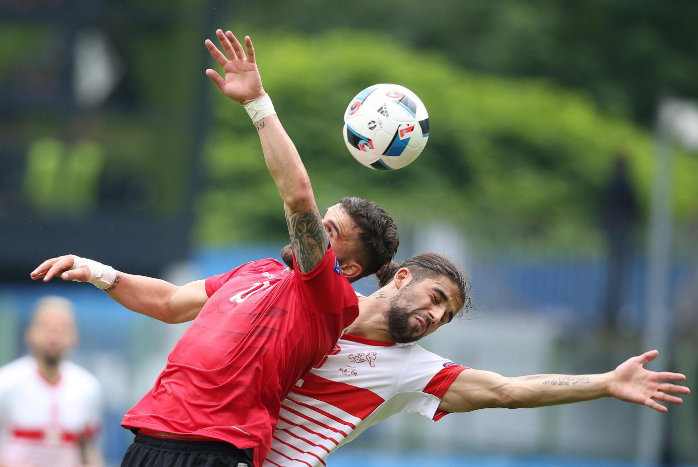 Euro 2016 Albania   Svizzera