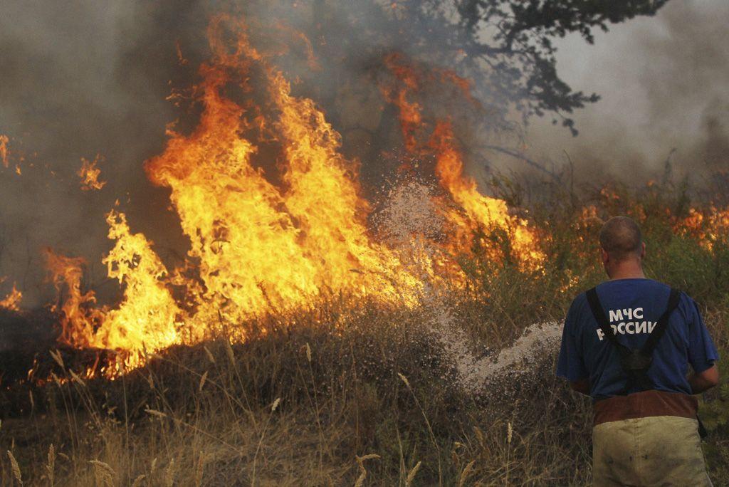 10 drammatiche conseguenze degli incendi dolosi sull'ambiente