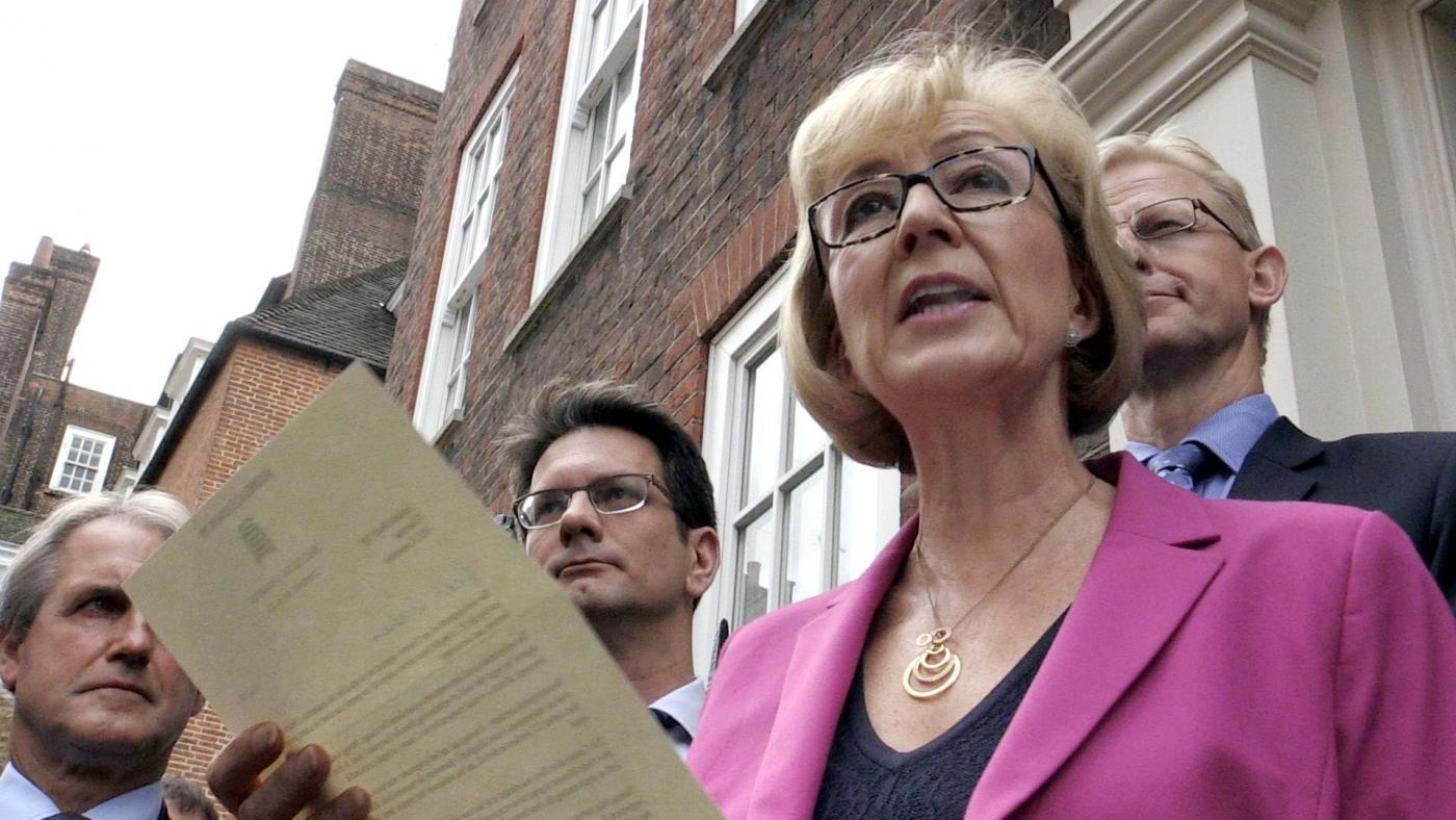 Conservative leadership bid