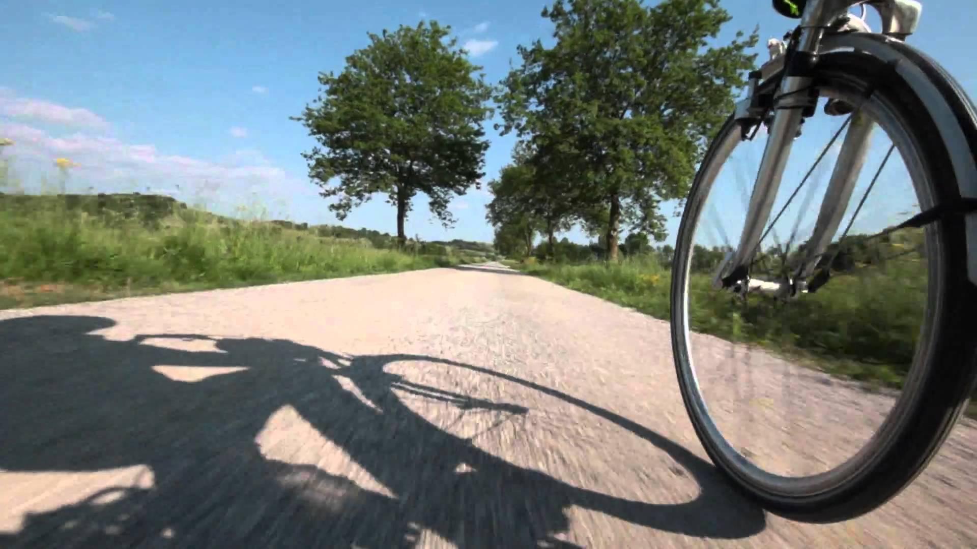 Piste ciclabili in Italia: luci e ombre della mobilità sostenibile tricolore