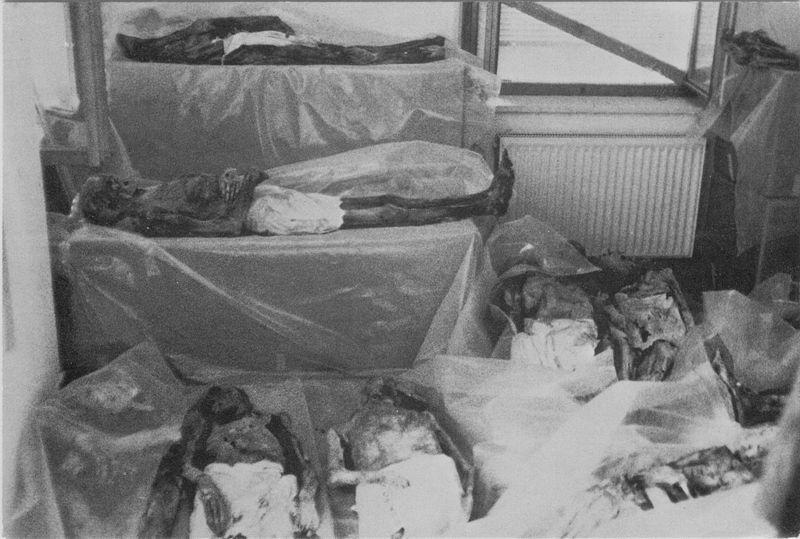 riparo provvisorio mummie venzone