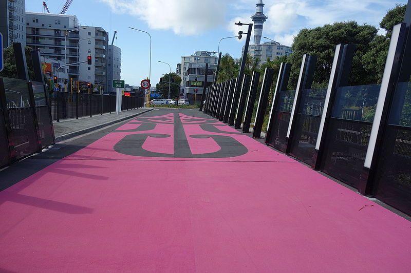 Pista ciclabile rosa in Nuova Zelanda: quando l'ecologia diventa trendy