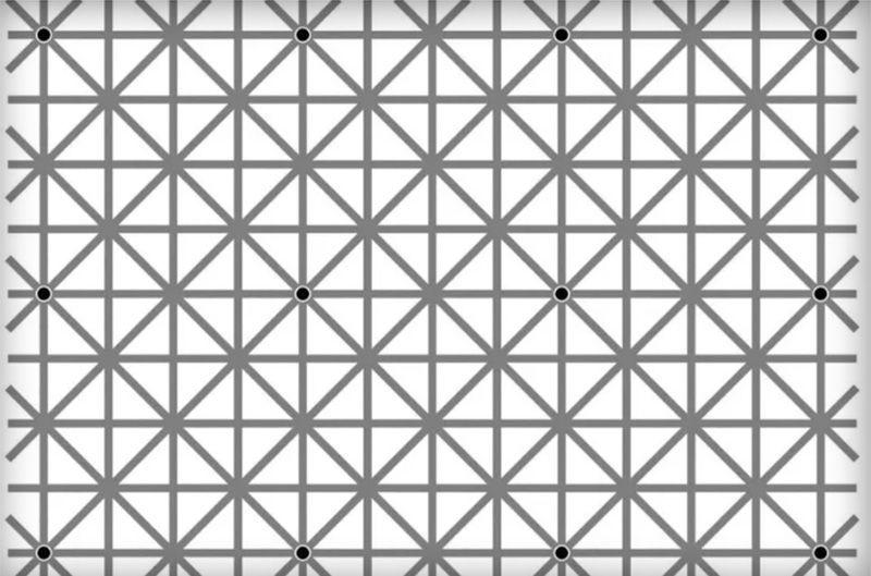 Quanti punti neri vedi in questo schema?