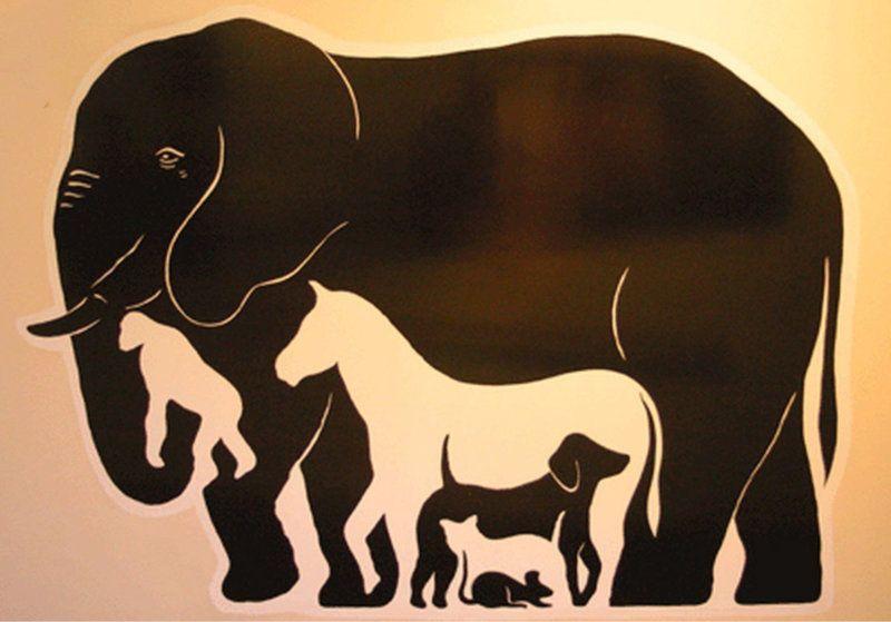 illusione ottica elefanti e animali
