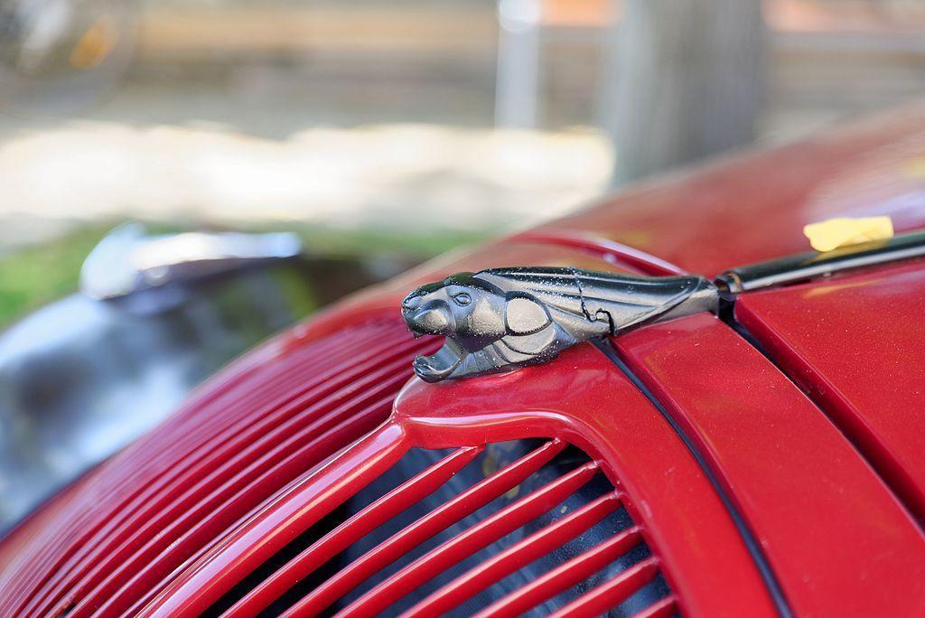 leone Peugeot 2