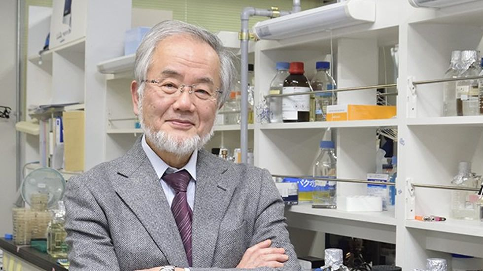 premio nobel medicina yoshinori ohsumi