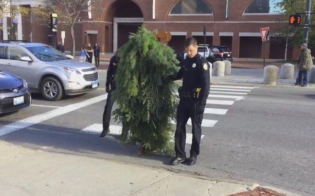 Blocco del traffico, per colpa di un uomo travestito da albero
