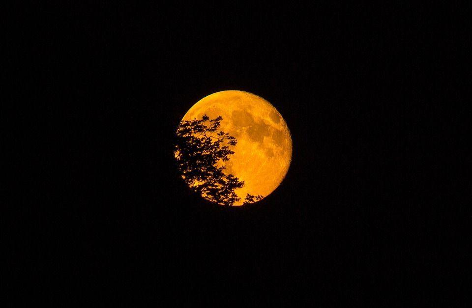 Superluna novembre 2016: la più grande e luminosa dal 1948 [FOTO]