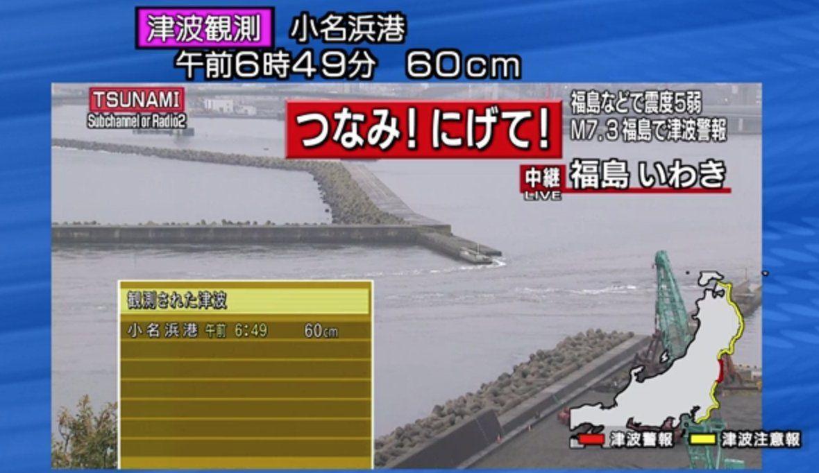 Giappone: tsunami dopo il terremoto, è allarme