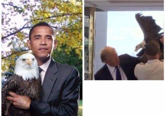 Trump e Obama differenze acquila