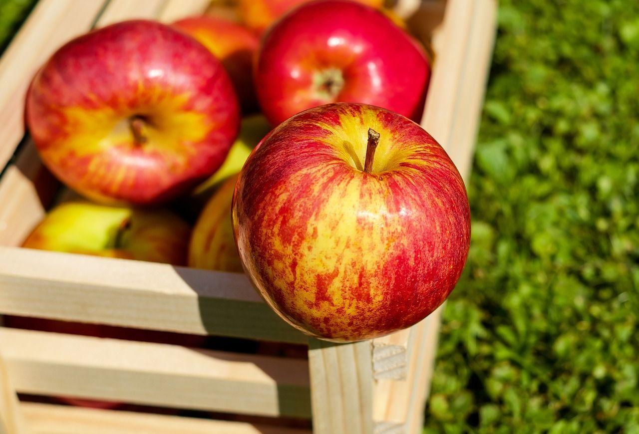 frutta abitudini dannose salute