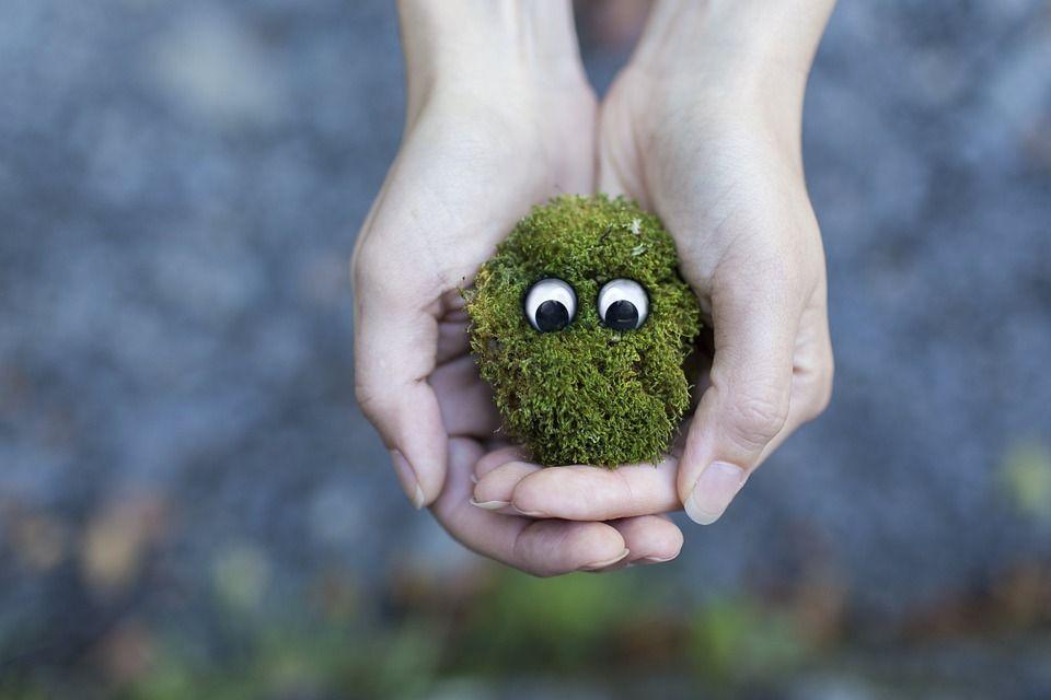 economia circolare ecologia rifiuti