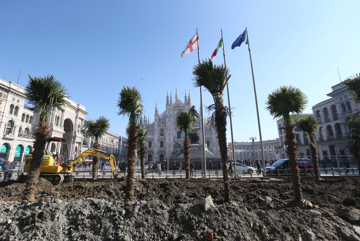 Palme in Piazza del Duomo a Milano