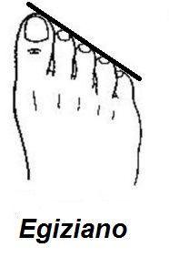 forma delle dita del piede 1 egiziano