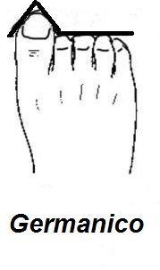 forma delle dita del piede germanico