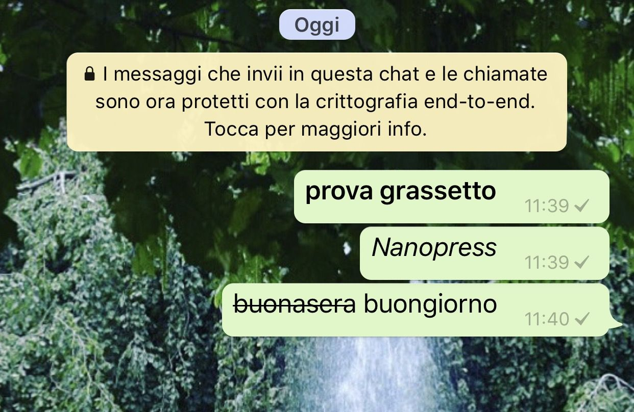 grassetto su whatsapp
