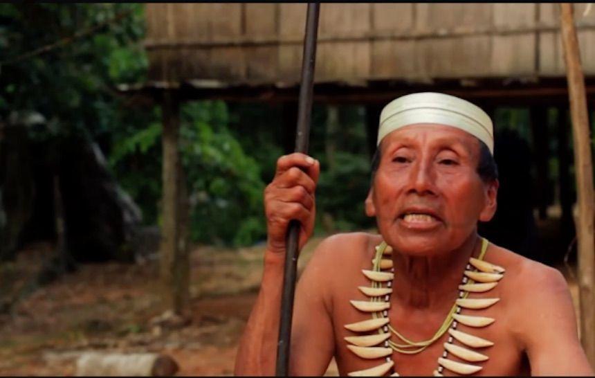 Compagnia petrolifera rinuncia alle esplorazioni nelle terre degli indios incontattati