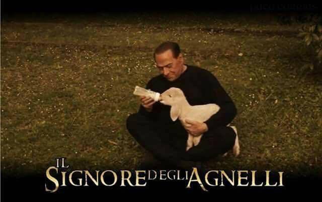 Berlusconi e l'agnellino, i social si scatenano: i meme più belli in rete