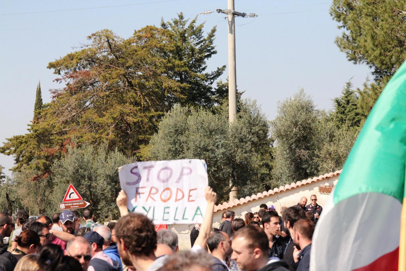 Tap gasdotto in Puglia: quali sono le ragioni della protesta?