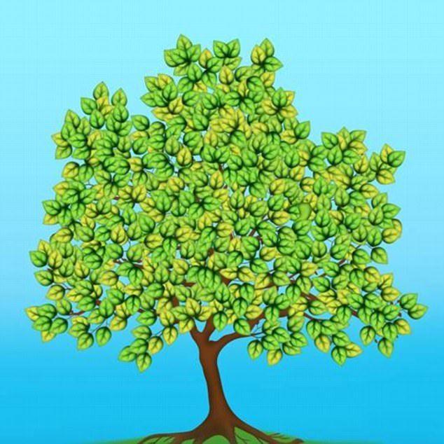 Riesci a trovare la foglia liscia tra i rami dell'albero?