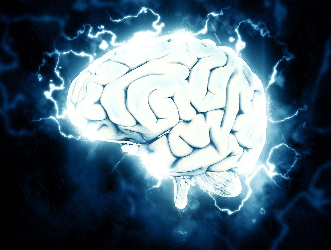 Morte cerebrale