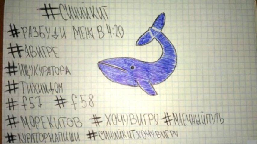 Blue Whale, regole del gioco: neanche una delle 50