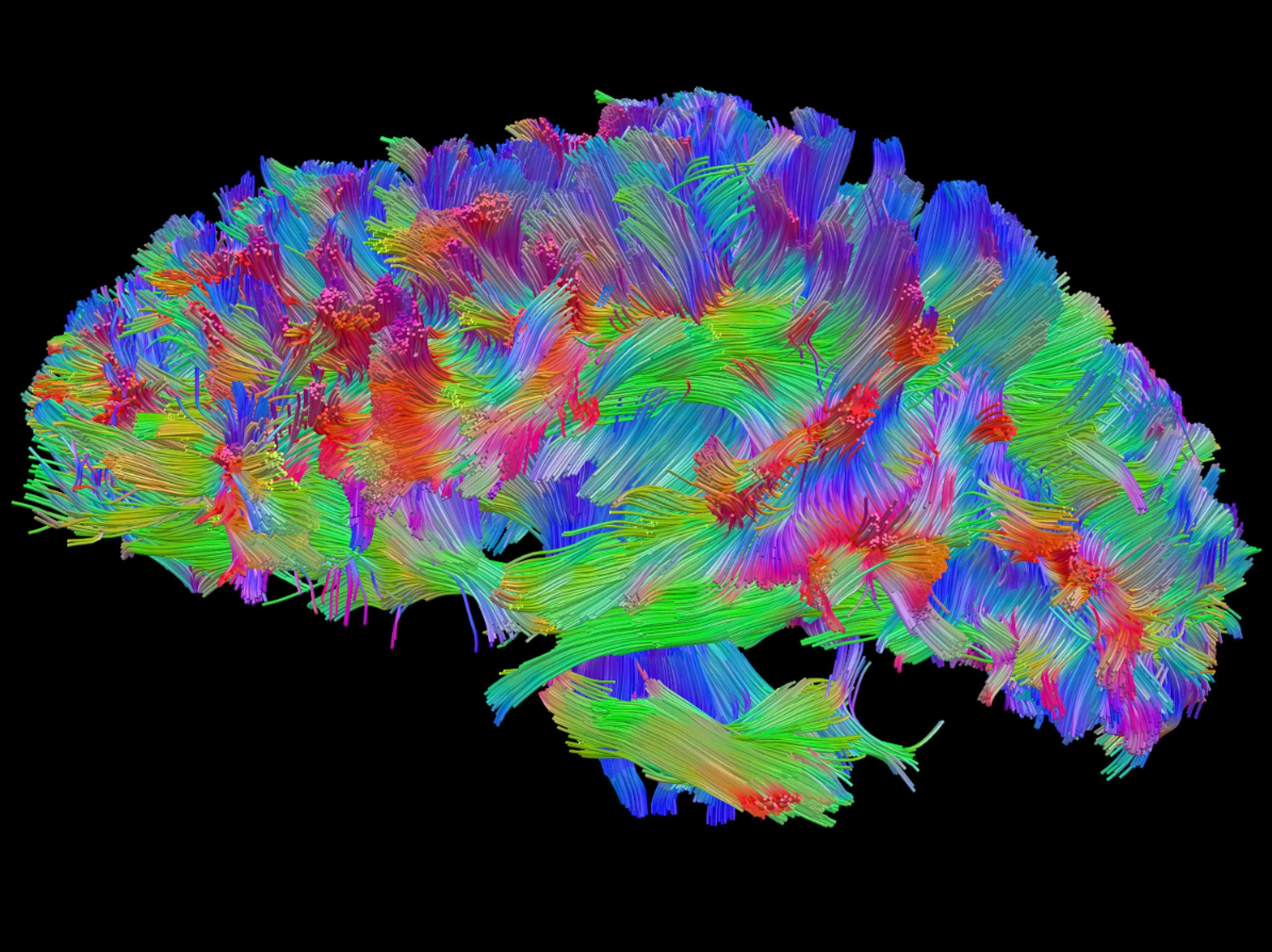 Danni cerebrali irreversibili: sintomi, cause e possibilità di recupero
