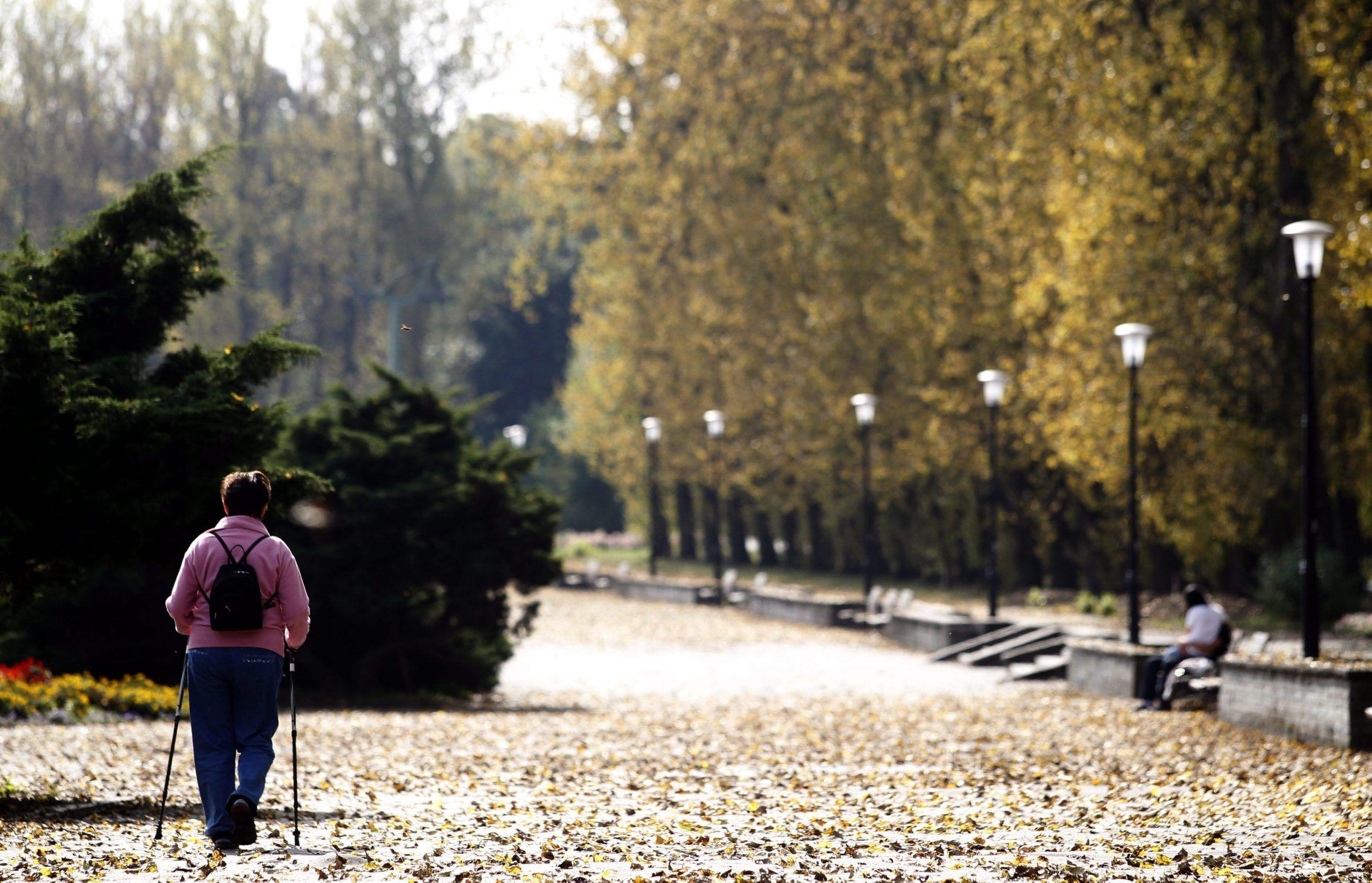 Nordic walking sclerosi multipla