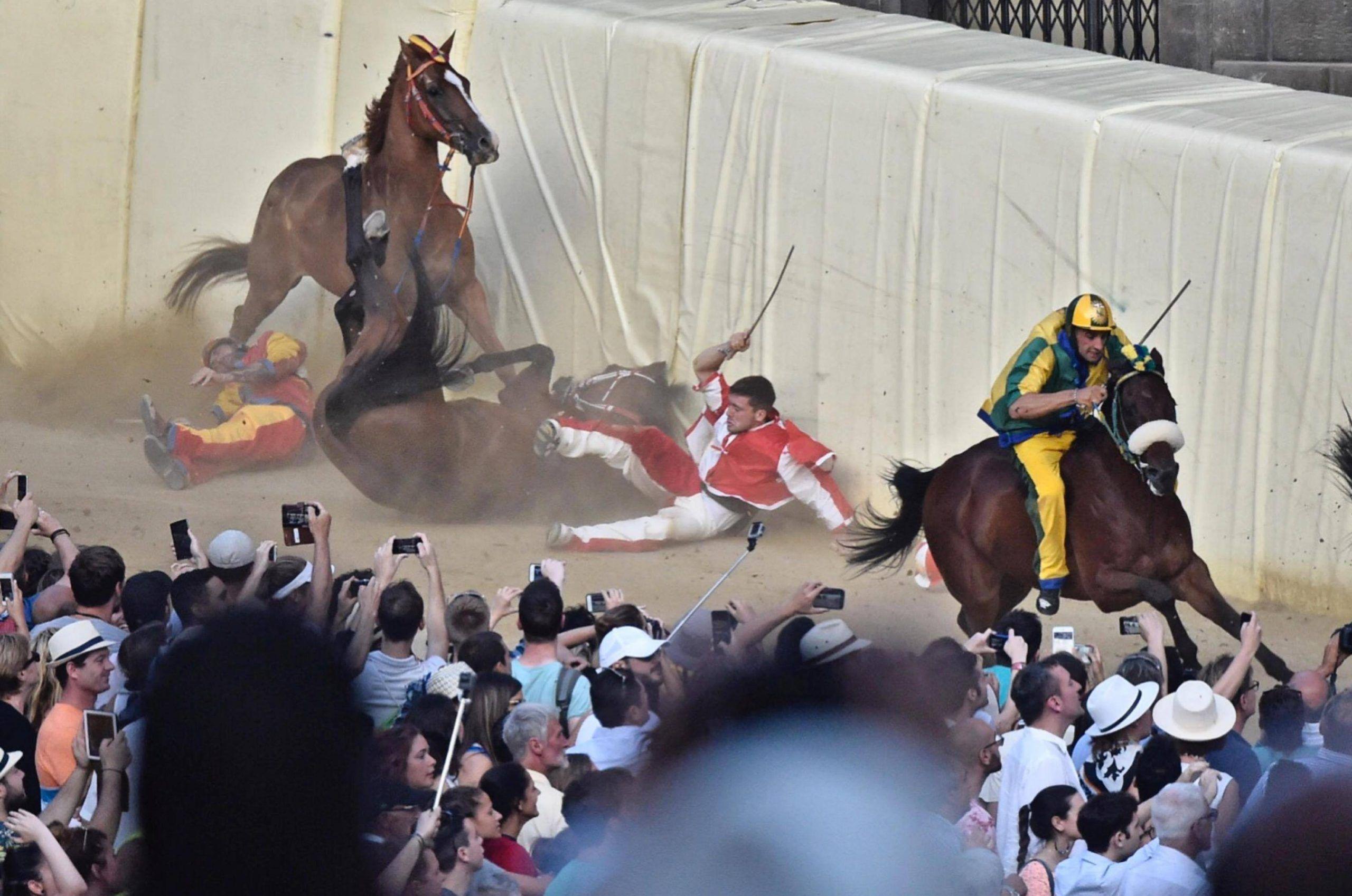 Palio di Siena Horse racing