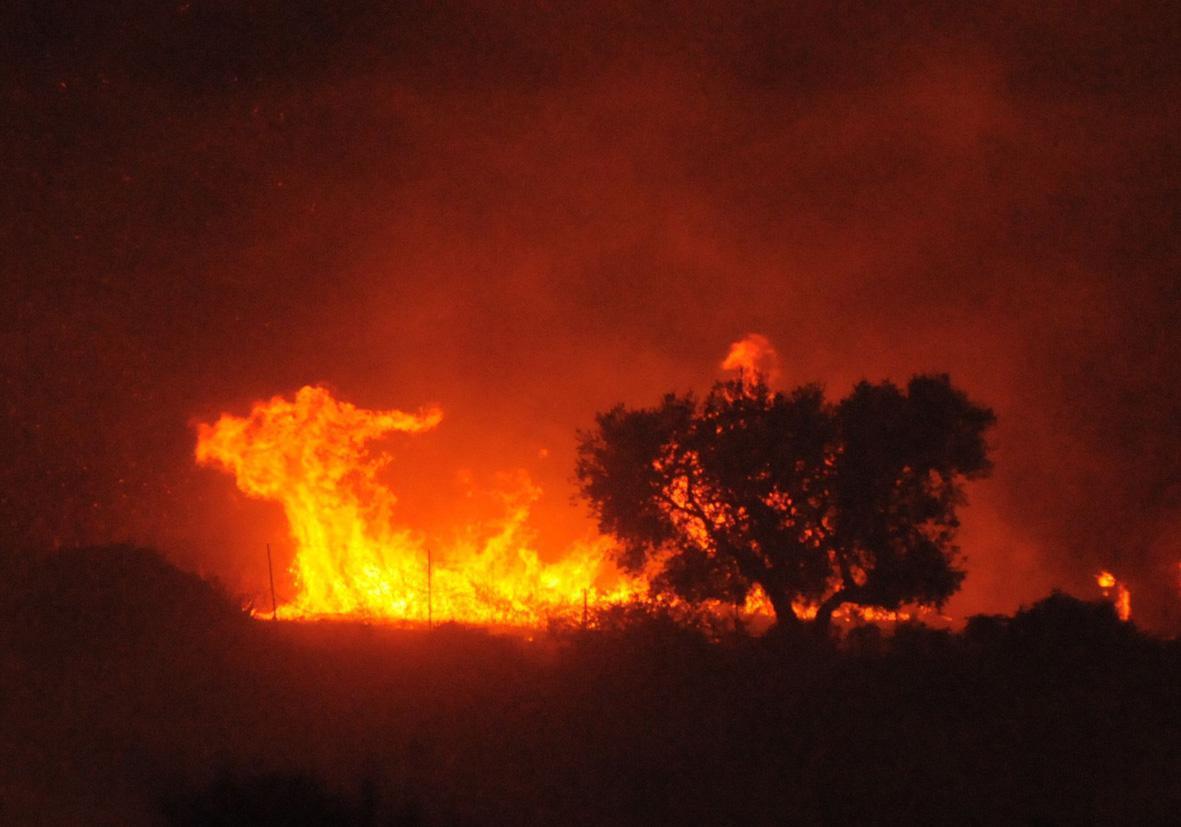 Come segnalare un incendio, tutte le info da sapere