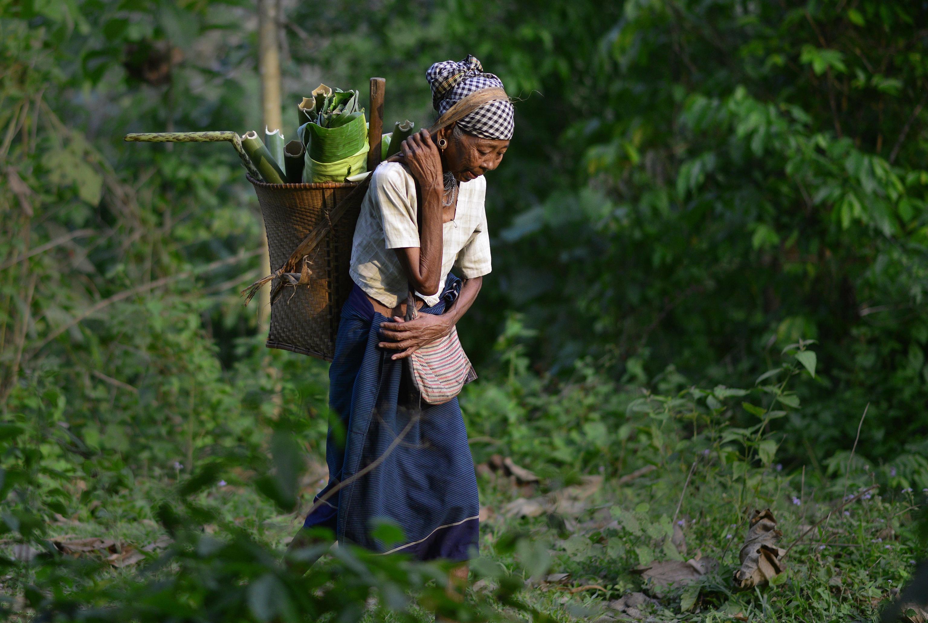 Nutrire il pianeta: la sostenibilità agroalimentare premiata con il Bologna Award