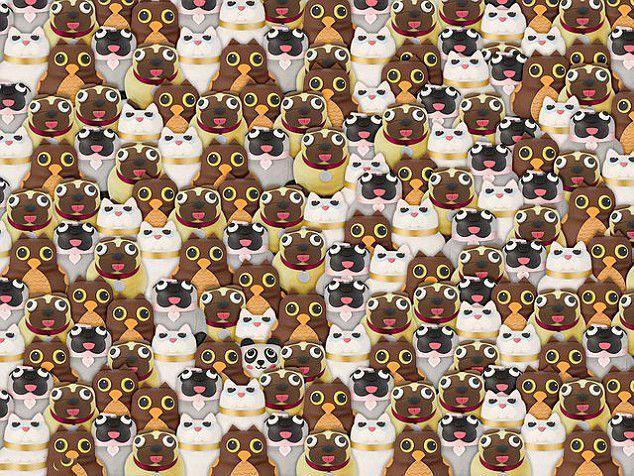 trova il panda 1