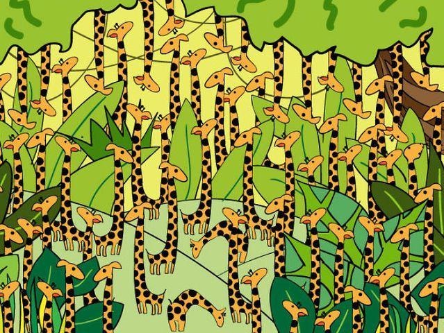 Riesci a trovare il serpente nascosto tra le giraffe?